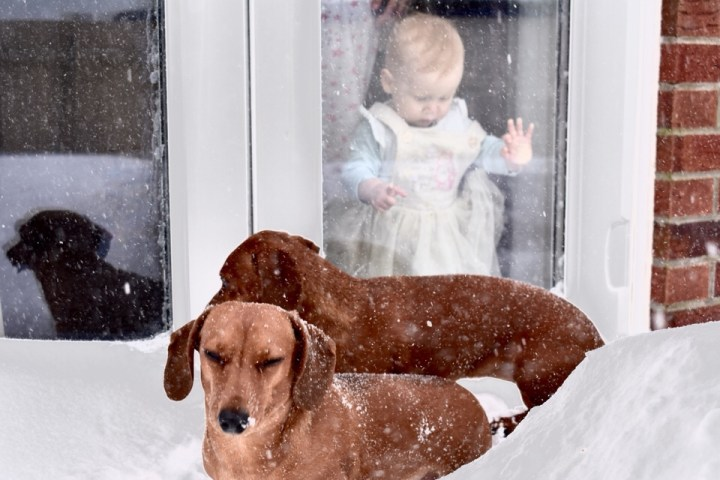 #MySundayPhoto – In Case You Didn't Notice, We Had Snow!