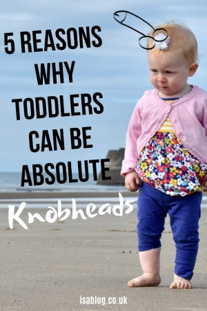 Let's be honest for a minute. Toddlers can be right knobheads at times. Like proper pain in the arse knobheads. So much so that I thought I'd give you give reasons why that's the case. I dare say there are more than 5, but let's not get carried away.