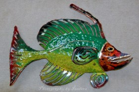 Tropical-Fish-web-signed