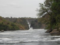 The Murchison Falls on the Nile River