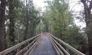 limerick_ul_riverbank_walkway_1_547wide