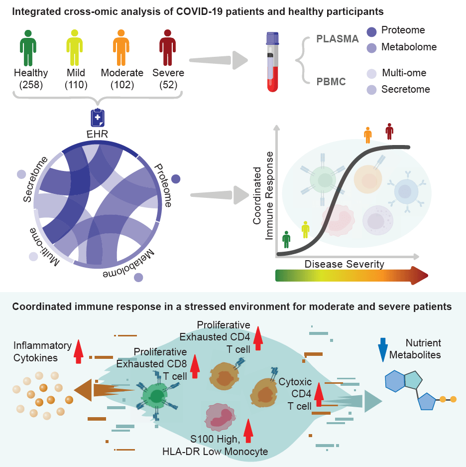Cell graphical request depicting immune response study findings