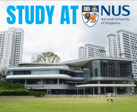 National University of Singapore | Acceptance rate, fees & more!