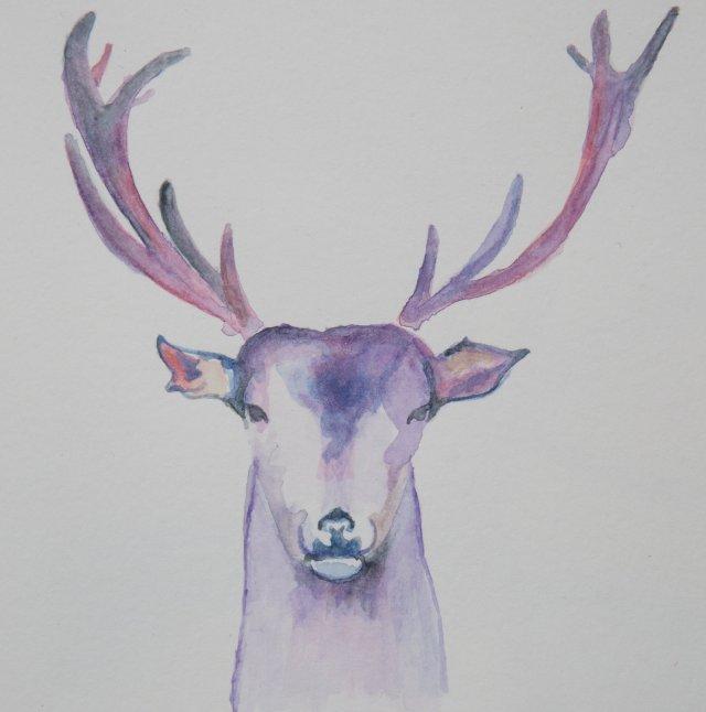 watercolor painting of a deer head