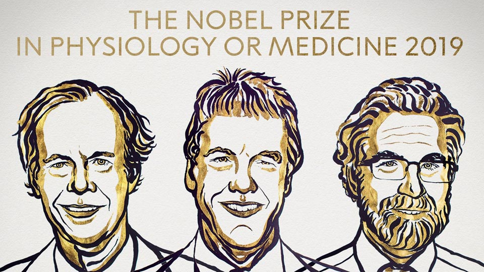 Nobel prize winners 2019