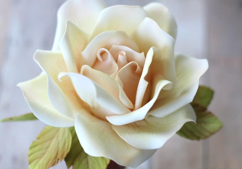 How to Make a Large Gumpaste Rose