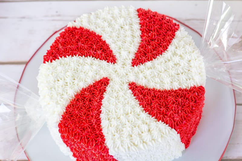 Giant Peppermint Candy Cake on a wood background