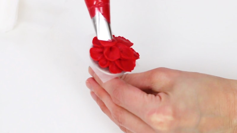 Piping a red buttercream flower