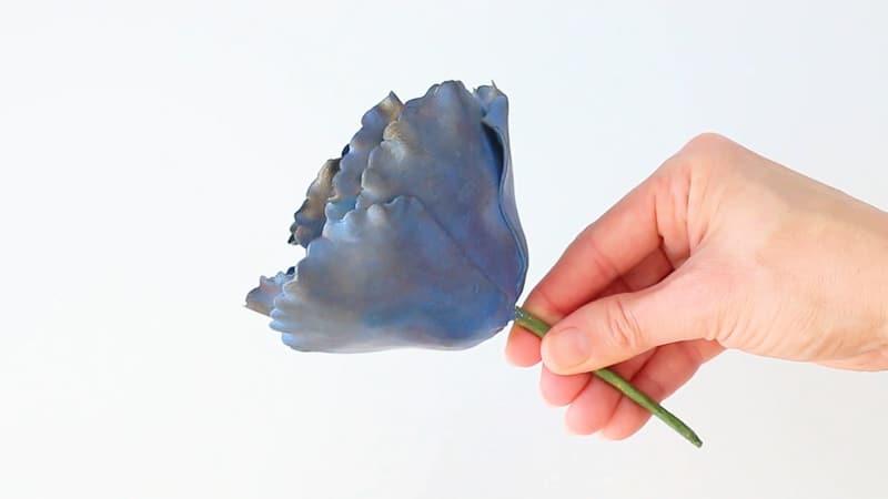steam the gumpaste rose