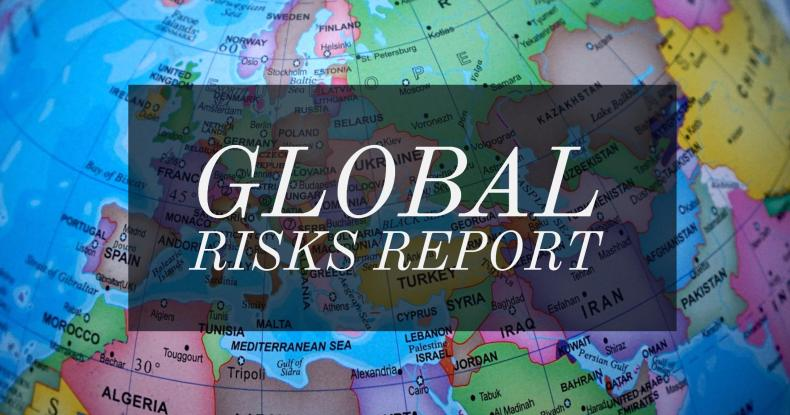 Global Risks Report