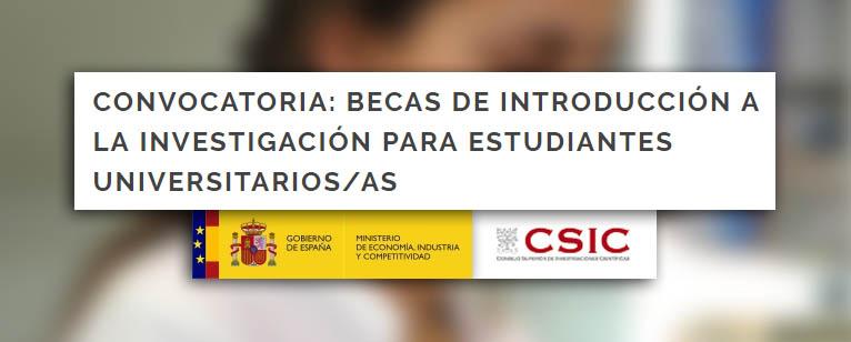 Convocatoria: Becas de Introducción a la Investigación para estudiantes universitarios/as