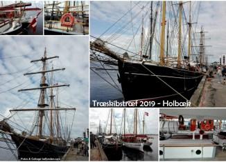 Collager med fotos fra Træskibstræf 2019 - Holbæk