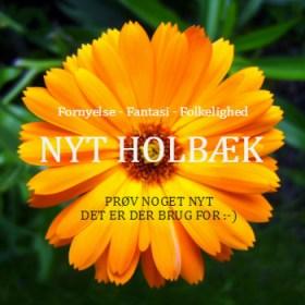Nyt Holbæk - Fornyelse - forandring - fantasi - X ved liste Y