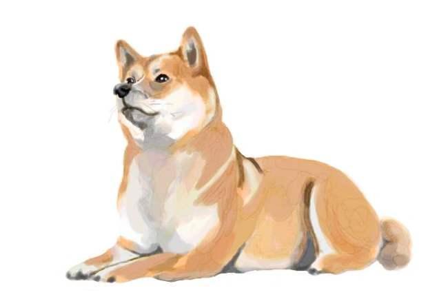2018年の干支「戌」年に初詣したい犬にまつわる神社