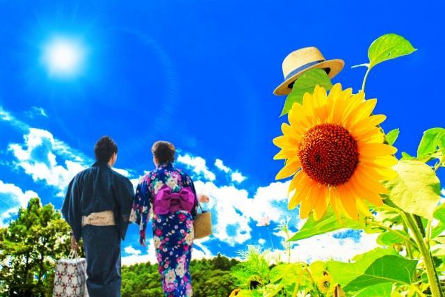 青夏ロケ地(ひまわり)