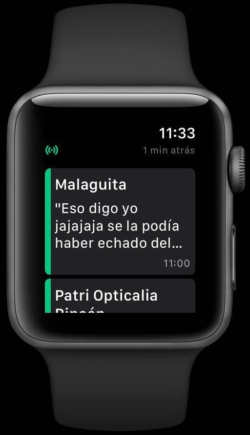 Ejemplo de conversación cargada den WatchUp