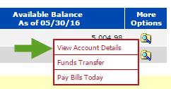 View Account Details BPI Account