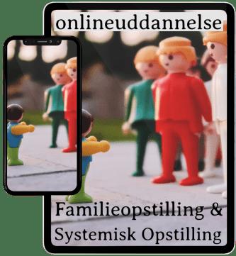 Lær Familieopstilling online