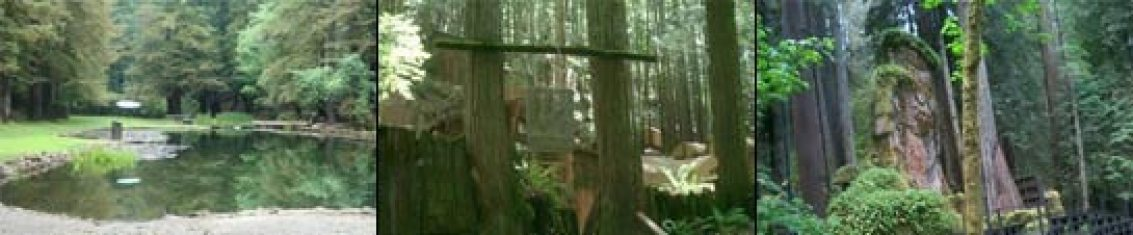 Bohemian Grove pictures of the lake, the owl and Camp Hill Billies.