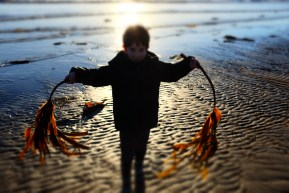 Number 1 son with seaweed