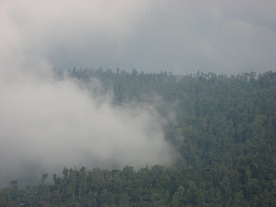 8 top places to see in yercaud 1