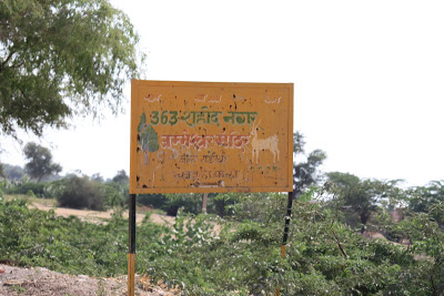 Khejarli village 4