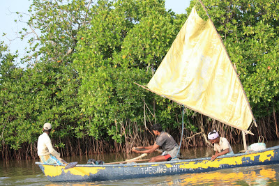 eco tourism Peechavaram 4