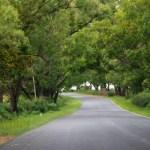 Road wordless