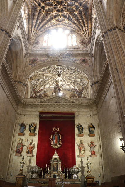 New Cathedral of Salamanca 2