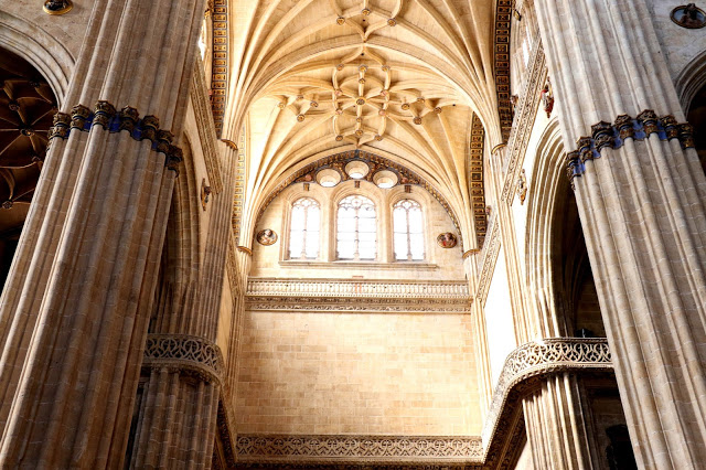 New Cathedral of Salamanca 7