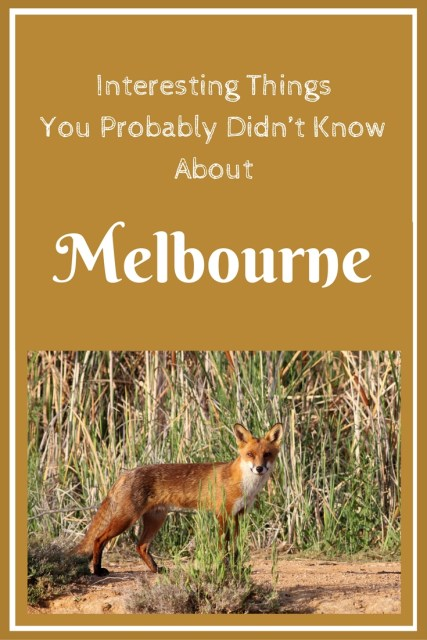 Interesting Things You Probably Didn't Know About Melbourne