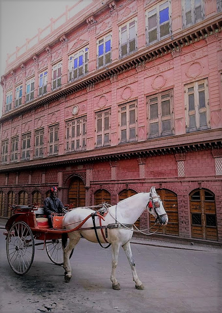 Rampuria Haveli Tour in Horse driven Carriage