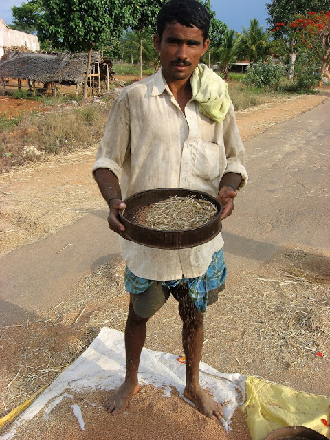 Rural agriculture faces of India