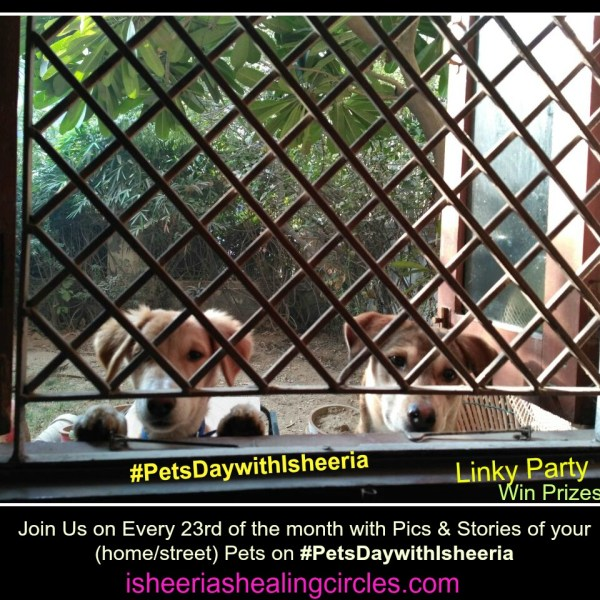 #PetsDaywithIsheeria-March2017