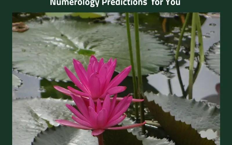 July 2018 numerology predictions #isheeria