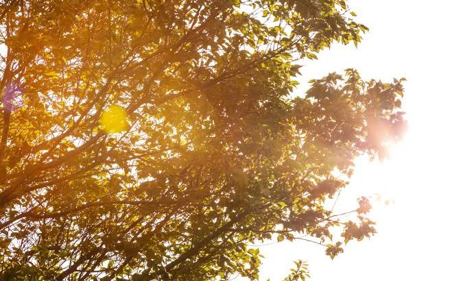 以外と怖い秋の紫外線!秋のヘアケア対策2つのポイント