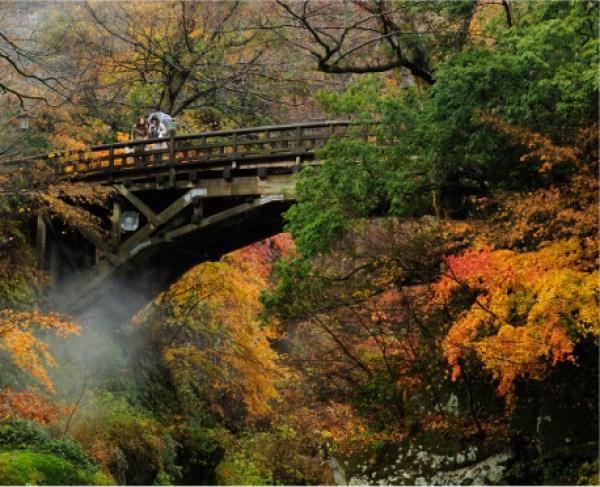 img via 山中温泉公式サイト 紅葉の「こおろぎ橋」