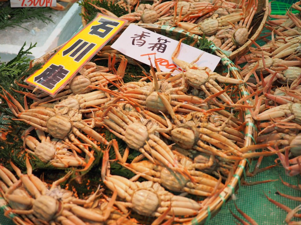 koubako-kani-crab-kanazawa-ishikawa