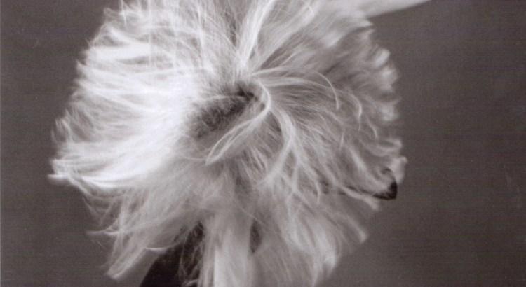 Tanzen und Haare