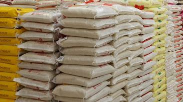 bags-of-rice-
