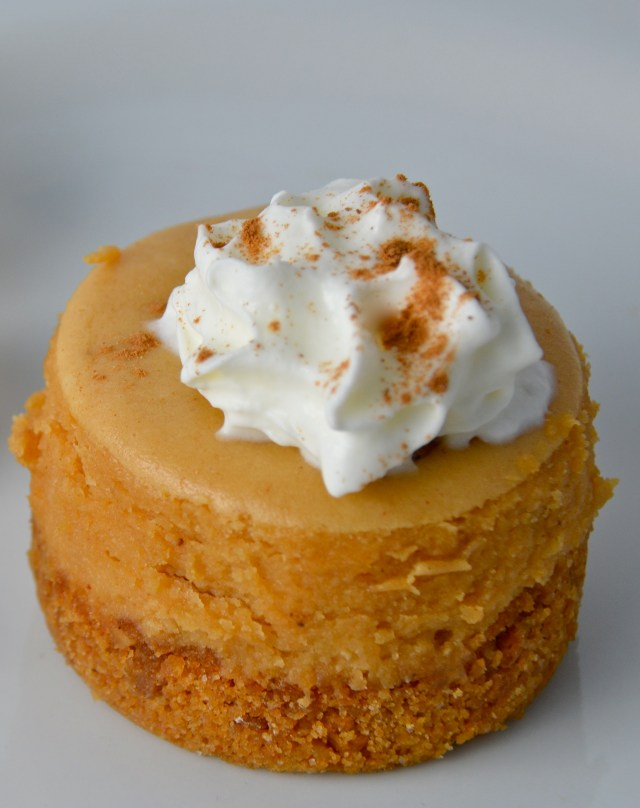 Mini Gingerbread Cheesecake