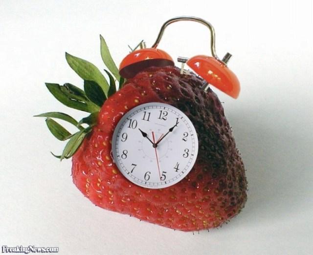 Strawberry-Alarm-Clock--16894