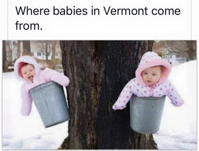 where-babies-in-vt-come-from