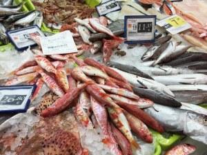 erosky-fischtheke-Märkte auf Mallorca
