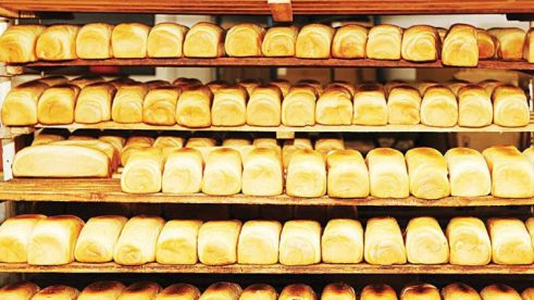 bisnis roti