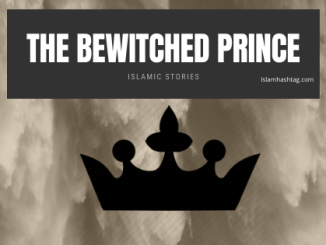 the bewitched prince