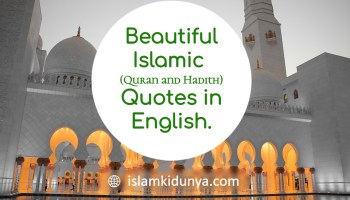 Beautiful Islamic (Quran and Hadith) Quotes in English.