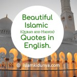 Quran & Hadith Quotes in English | Islamic Quotes