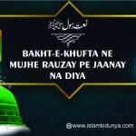 Bakht-E-Khufta Ne Mujhe Rauzay Pe Jaanay Na Diya