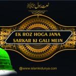 Ek Roz Hoga Jana Sarkar Ki Gali Mein
